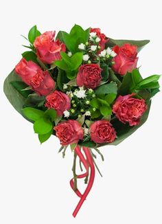 Gauteng Flower & Gift Delivery for all occasions. Whether you are looking for luxury or budget, our flower shops have what you are looking for. Gift Delivery, Orange Roses, Flowers, Gifts, Presents, Favors, Royal Icing Flowers, Flower, Florals