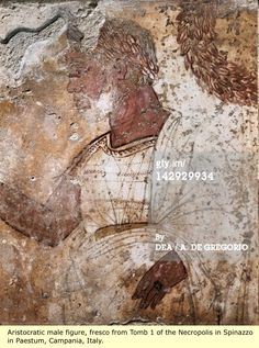 Etruria: The Black Etruscans, The Black Phoenicians, The Latins, The Romans.  Italy