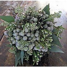 brunia & seeded eucalyptus