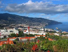 Maderia,  the island of my ancestors