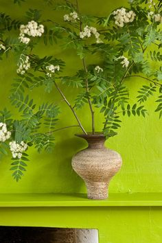 Color Roundup: Chartreuse, Lime and Apple Green in Interior Design Go Green, Green Colors, Pretty Green, Vase With Branches, Kalter Winter, Deco Floral, Color Of The Year, Pantone Color, Belle Photo