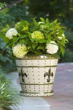 Fleur de Lys Pot