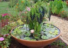 Gartenteich klein selber machen pflanzen schwimmen ideen