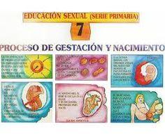 f79aef80f Resultado de imagen para proyecto escolar sexo en niños
