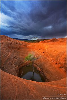 ✯ Sheltered from the Storm - Escalante, Utah