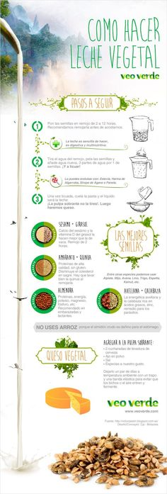 Infografía Veo Verde: Aprende a hacer leches y quesos vegetales - Vegan Foods, Vegan Vegetarian, Vegetarian Recipes, Raw Food Recipes, Veggie Recipes, Healthy Recipes, Healthy Drinks, Healthy Snacks, Fromage Vegan
