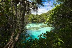 Aquarium naturel, Maré, Nouvelle-Calédonie. http://www.lonelyplanet.fr/article/les-plus-belles-plages-de-nouvelle-caledonie #aquarium #naturel #Maré #NouvelleCalédonie #voyage #plage #beach
