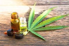 #Edible #Cannabis #Industry Ripe for #DisruptiveTechnology #Hemp and Cannabis News @tallgreenz  #startups