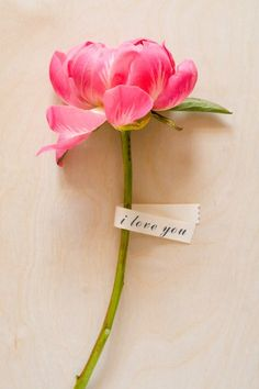 """""""i love you"""" can be said so simply, yet so beautifully!"""