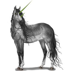 Unicorn Quarter Horse Dun