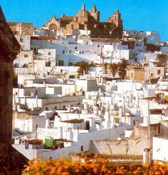 "Ostuni, Italy ""The White City."" One of my favorite places when I travelled."