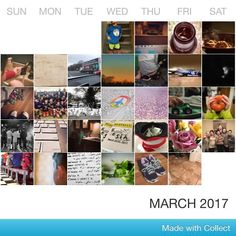 365 project - March complete! #365 #365Project #march