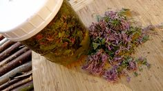 How to make a  Bee Balm Oxymel (for colds, flu) or use Bee Balm flowers & leaves in salads. Good for potpourri too.