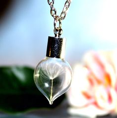 Tiny glass HEART with One Special Wish, Dandelion Seed in a vial, Botanical Terrarium Necklace- Glass Bottle Pendant -Botanical jewelry by SweetyLifeShop on Etsy https://www.etsy.com/listing/204242090/tiny-glass-heart-with-one-special-wish