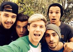 One Direction are a band of rich young men, that much is indisputable. In 2013 reports suggested that Harry Styles, Liam Payne, Louis Tomlinson, Niall Horan and Zayn Malik were worth around mil… One Direction 2014, One Direction Selfie, Grupo One Direction, One Direction Group, Members Of One Direction, One Direction Pictures, One Direction Fandom, Midnight Memories, Luke Hemmings