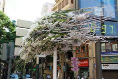 Els Monuments Florals - Corpus Cristi #Valencia #Spain