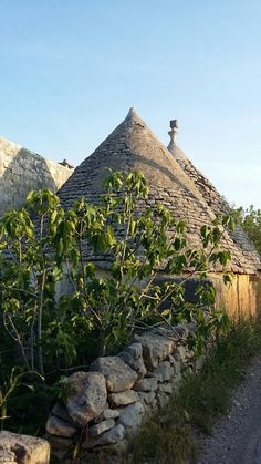 #pugliadascoprire #puglia #beautiful #followme #travel #trulli #weareinpuglia #phototour #lucillacumanphotography #awesome #italy #italiantour