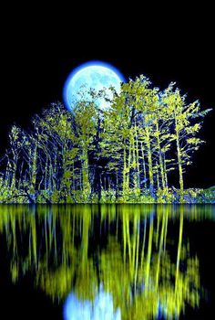 Explore amazing art and photography and share your own visual inspiration! Beautiful Moon, Beautiful Sites, Beautiful Pictures, Beautiful Places, Moon Photos, Moon Pictures, Moon Pics, Alaskan Bush People, Dope Wallpapers