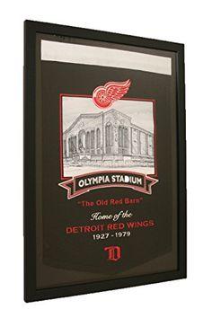 Detroit Red Wings NHL Framed Joe Louis Arena Stadium Series Banner – Detroit Sports Outlet