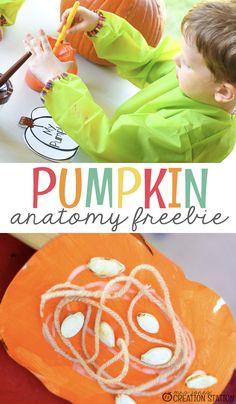 Cutting up a pumpkin