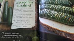 Accordion Zucchini - Forest Feast-Erin Gleeson