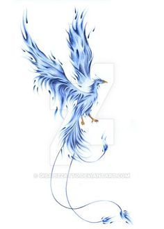 blue phoenix.. beautiful                                                                                                                                                      More