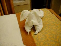 Carnival splendor room steward making a towel dog Napkin Origami, Towel Origami, Napkin Folding, Origami Toilet, Toilet Paper, Toddler Paper Crafts, Paper Towel Crafts, Towel Animals, How To Fold Towels