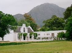 Stellenbosch. To me so typical S. Africa. Beautiful.