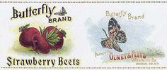 Vintage Can Labels for miniature dollhouse food  - Butterfly Beets