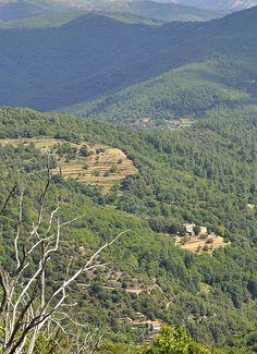 #Paysage Cévenol #montagnes #cévennes