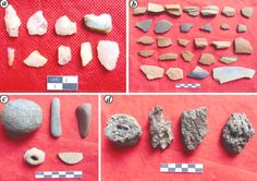 70 graves discovered at Iron-Age site in SW India