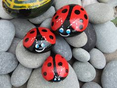 Love these ladybug painted rocks! Could do this for craft day!