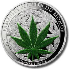 cannabis sativa .desde su legalización para la investigación y propósitos comerciales en 1998, el cáñamo ha creado  mucho interés entre granjeros canadienses, australianos y europeos. el gobierno de estos países ha sido de gran apoyo a la industria del cáñamo que reaparecía a través de cambios en la legislación y regulaciones, y con millones de dólares en el financiamiento de investigación y desarrollo.