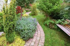 Bredden på trädgårdsgången avgörs av ändamålet. Man brukar säga att trädgårdens huvudgångar ska vara så pass tilltagna att två personer kan promenera i bredd utan problem, vilket i klartext innebär en bredd på 1,2 meter eller mer. Om du vill att trädgårdsväxter ska hänga in över den behöver du avsätta plats även för det.
