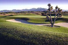 Paiute Golf Resort in Nevada