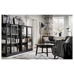 Living Room Furniture Amp D 233 Cor Ikea Bookcase With Doors