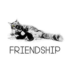 Check out this awesome 'Cat+and+dog+friendship' design on Cat Gifts, Cat Lover Gifts, Cat Lovers, Dog Design, Modern Fashion, Gift Guide, Dog Cat, Friendship, Cats