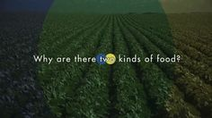 LEARN GMO Episode 4: Why are there two kinds of food? on Vimeo