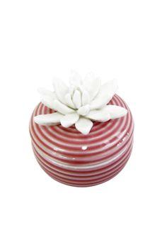 A Loja do Gato Preto | Caixa Rosa Flor Branca #alojadogatopreto