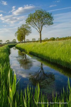 Typical Dutch aggregation water in the North Brabant landscape