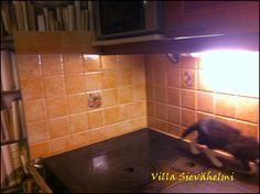 Villa Sievähelmi: Pientä pintaremonttia hintaan 9,90 :)