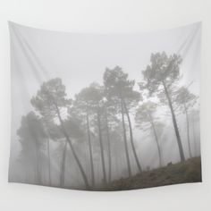 15% Off + Free Shipping on Tapestries, Throw Pillows + All Home Decor - Ends Tonight at Midnight PT!    Link:  http Available in three distinct sizes, our Wall Tapestries are made of 100% lightweight polyester with hand-sewn finished edges. Featuring vivid colors and crisp lines, these highly unique and versatile tapestries are durable enough for both indoor and outdoor use. Machine washable for outdoor enthusiasts, with cold water on gentle cycle using mild detergent - tumble dry with low…