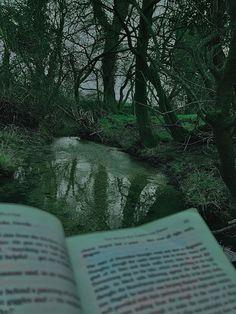 Dark Green Aesthetic, Nature Aesthetic, Book Aesthetic, Aesthetic Photo, Aesthetic Pictures, Adventure Aesthetic, Paradis Sombre, Twilight, Ramses