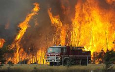 Victoria, Australia - A fire truck moves away from out of control flames from a bushfire in the Bunyip Sate Forest near the township of Tonimbuk, 125 kilometers miles) west of Melbourne, Saturday, Feb. Tsunami, Fire Tornado, Wildland Firefighter, Australian Bush, Into The Fire, Image Shows, Fire Trucks, Horses, In This Moment