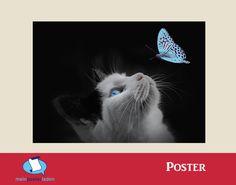 Poster: Blaue Schönheit - Katze - Mein Posterladen - DaWanda
