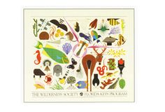 The Wilderness Society Florida Keys Poster