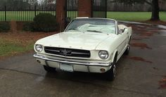 Ford Mustang Convertible   eBay Ford Mustang Convertible, Mustangs, Product Launch, Classy, York, Ebay, Chic, Mustang