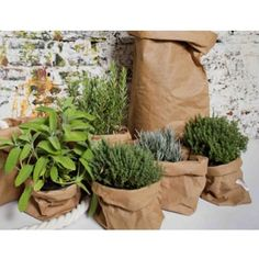 Paperbags washable