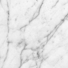 Pegasus 4 in. x 4 in. White Carrara Marble Sample-99108 - The Home Depot