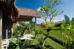 The Natural Joglo, a reclaimed antique house from Java